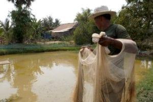 Cambodja rimpeleffect vissers 1